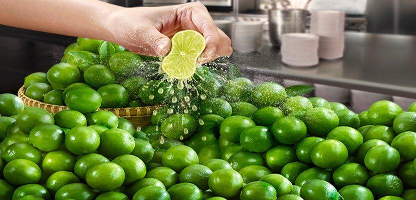 كنور بودرة تتبيلة الليمون (12x400 غرام) -