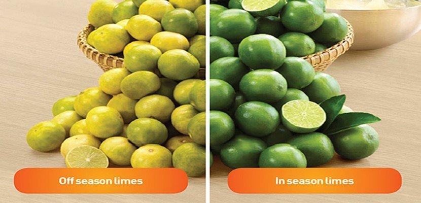 كنور بودرة تتبيلة الليمون (12x400 غرام) - نكهة ورائحة الليمون الحامض الطبيعي.
