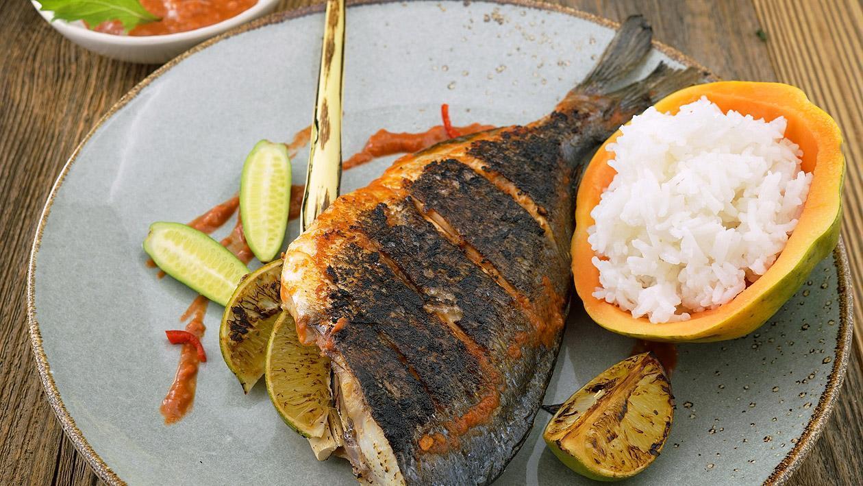 Ikan Rica Rica Gegrillte Dorade nach Manedo Art