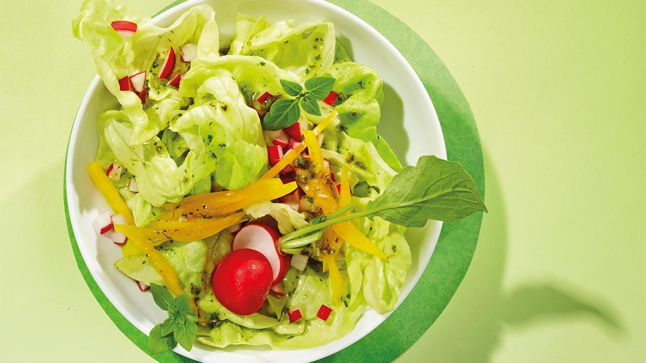 Kopfsalat mit Pesto-Kräuterdressing