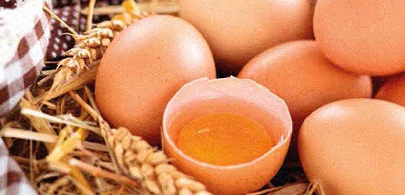Hellmann's Μαγιονέζα Real 10 lt - Με 100% αυγά ελευθέρας βοσκής