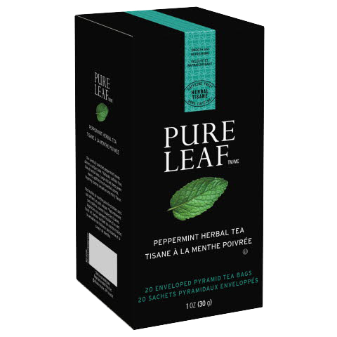 Pure Leafᵀᴹ Hot Tea Bags Peppermint 20 count, Pack of 6