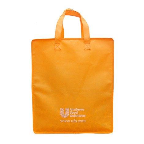 UFS bag