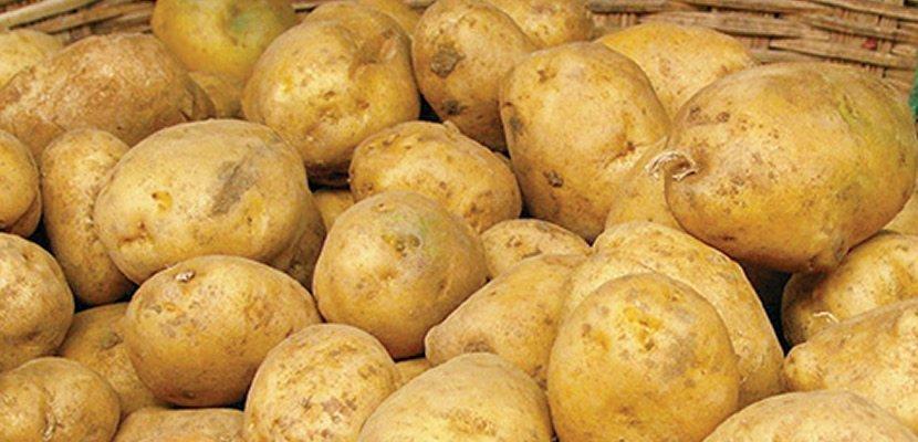 Pure de papas Knorr 2KG - Hecho con papas de calidad provenientes cultivos sustentables!