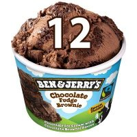 Ben & Jerry's Mini Glace Chocolate Fudge Brownie | 12 x 100 ml