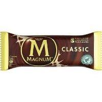 Magnum Ola Glace Classic | 20 x 120 ml