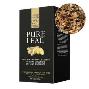 Pure Leaf Ginger Orange Blossom BIO - 20 sachets -
