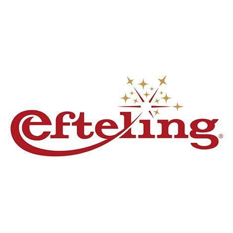 Ticket d'entrée Efteling