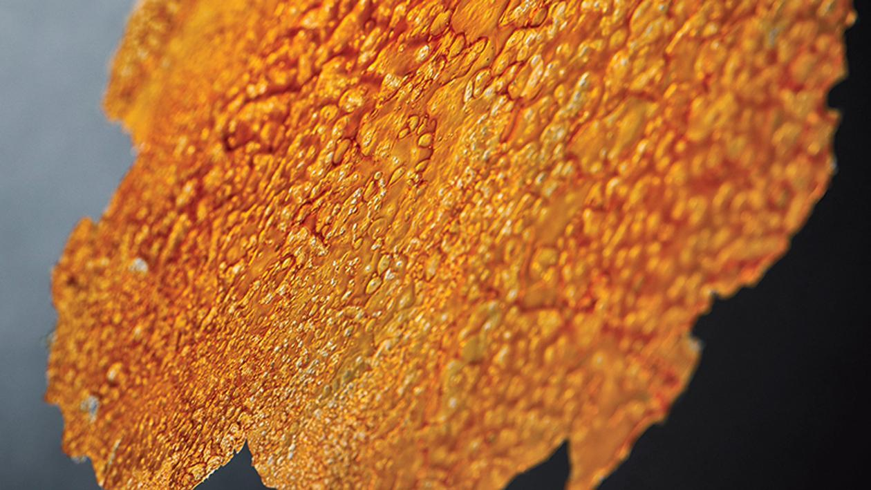 Croustillants de crustacés – Recette