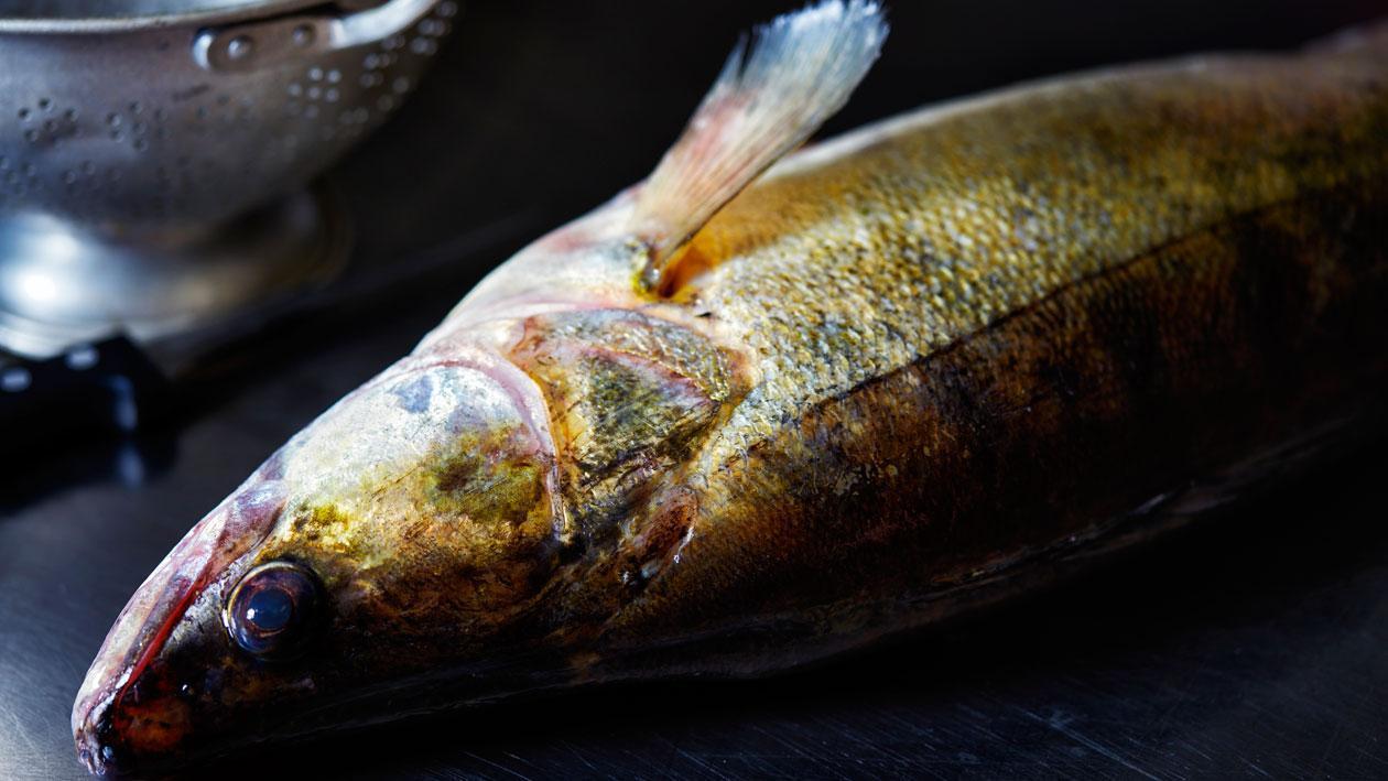 Farce de poisson – Recette