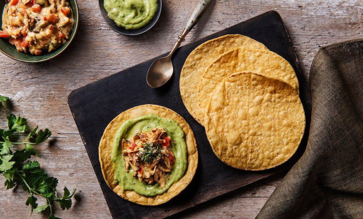 Tostada Ceviche aux Champignons et Noix de Coco – recette
