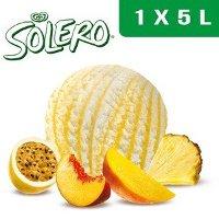 Solero Parfum Vanille et sauce fruits exotiques 5 L