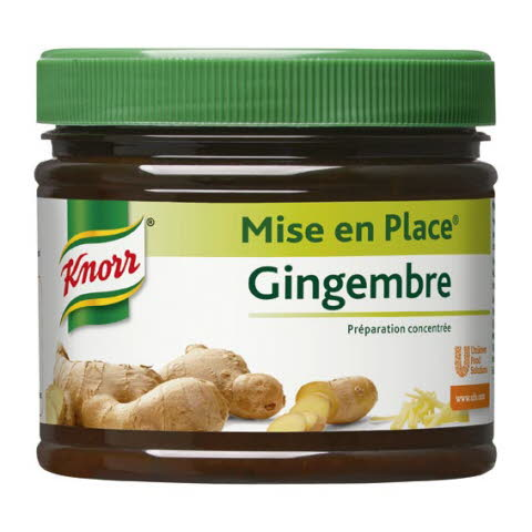 Knorr Mise en Place Gingembre 340 g