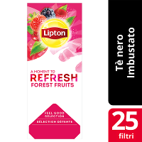 Lipton Forest Fruits Tea Flavoured Black Tea 25 Filtri