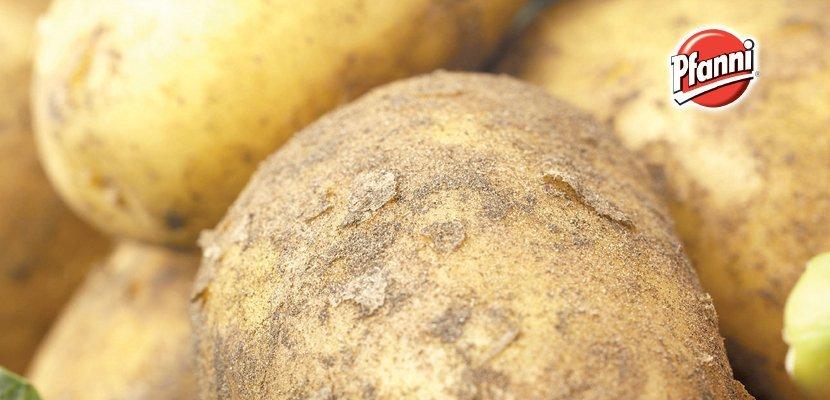 Pfanni Preparato per Purè di patate in fiocchi 4 Kg - 100% patate di qualità provenienti da agricoltura sostenibile.