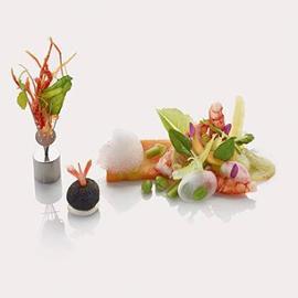 Gamberi al vapore di alghe con terrina di carotine novelle al succo di yuzu e asparagi verdi e aria di limone