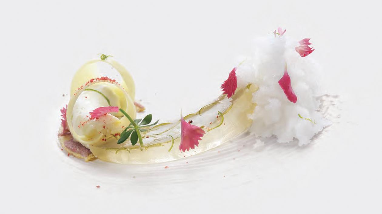 Iceber-gamotto: Mousse al cioccolato bianco e gelatina di bergamotto su daquioise al cocco – Ricetta
