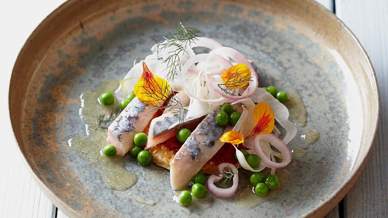 Sgombro marinato agli agrumi con insalata di finocchio croccante – Ricetta