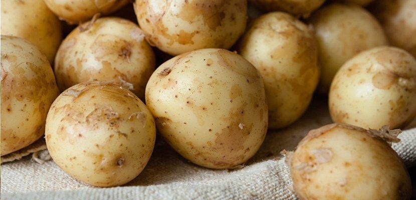 Kentang Lecek Knorr 500g - Diperbuat daripada 99% kentang Jerman sebenar