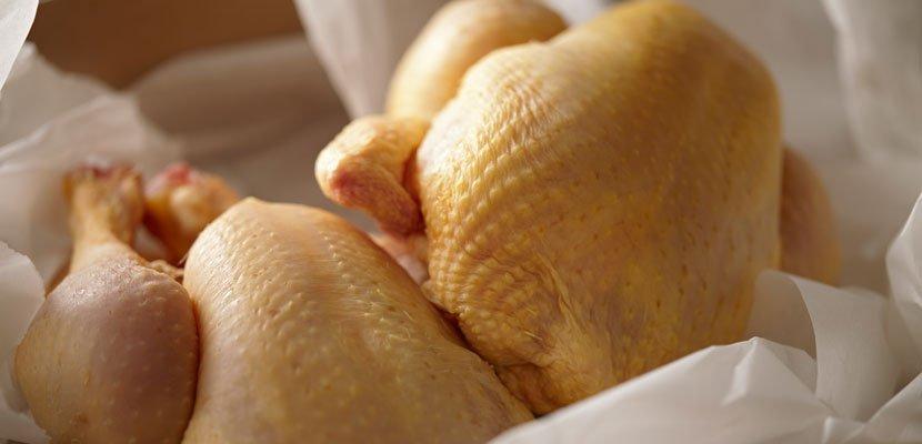 Knorr Professional Geconcentreerde Bouillon Kip - Met de intense en natuurlijk smaak van kip