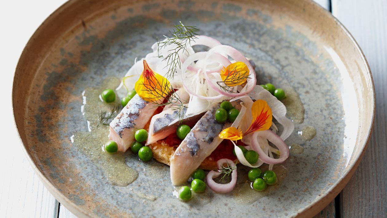 Gemarineerde makreel met citrus en knapperige venkel