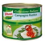 Knorr Campagna Tomatensauce mit Pilzen und Gemüse 2 KG -