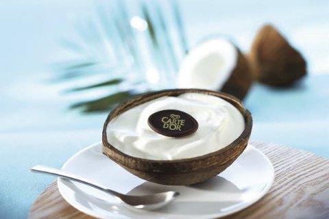 Carte D'Or Fertige Eisdesserts Kokosnuss 12 x 130 ml -