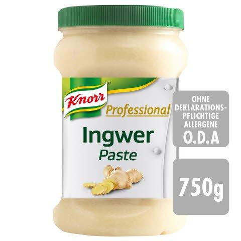 Knorr Professional Gewürzpaste Ingwer 750 g  - Knorr Professional Gewürzpasten sind immer sofort einsetzbar.
