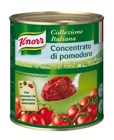 Knorr Concentré de tomates 800 g
