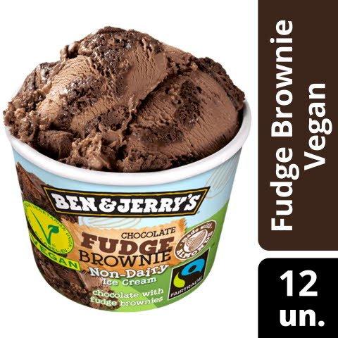 Ben & Jerry Fudge Brownie Non Dairy -