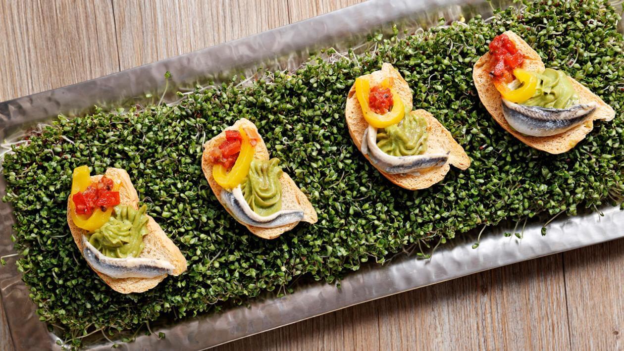 濃縮蕃茄白鯷魚開胃脆餅